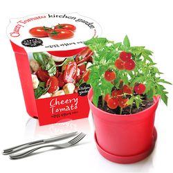 세경팜 컬러키친가든 방울토마토 식물키우기 텃밭가꾸기