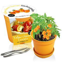 세경팜 컬러키친가든 노랑대추방울토마토 식물키우기 텃밭가꾸기