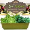 세경팜 샐러드텃밭세트 식물키우기(치커리 비타민채)