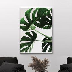 그린몬스테라 식물 액자 A3 포스터+알루미늄액자