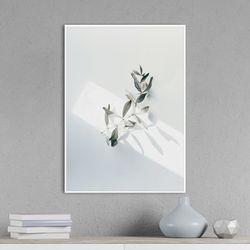 선샤인리프 식물 액자 A3 포스터