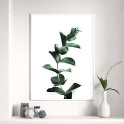 싱글유칼립투스 식물 액자 A3 포스터+알루미늄액자