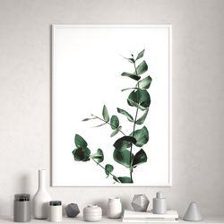 미니멀유칼립투스식물 액자 A3 포스터