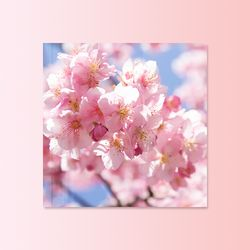 영원히 지지 않는 벚꽃 인테리어 액자 10종