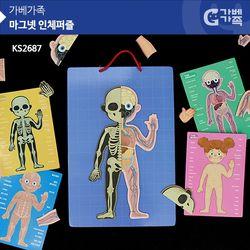 KS2687 마그넷 인체퍼즐