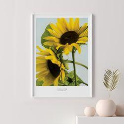 선샤인 해바라기 그림 50x70 포스터+알루미늄액자