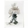 중형 패브릭 포스터 F323 장미 꽃 식물 사진 액자 White roses