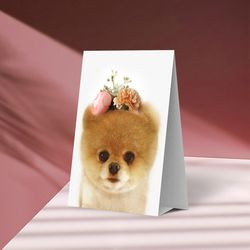 플라워포켓 스텐딩 카드 강아지