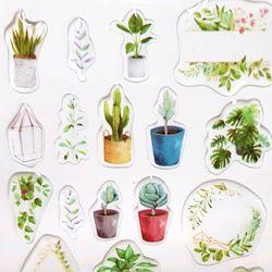 [인디고샵]푸른 식물원 투명 입체 스티커 (1개)