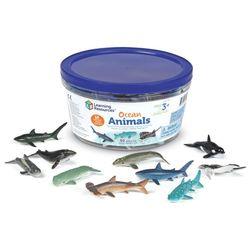 LER0799 바다동물 수세기