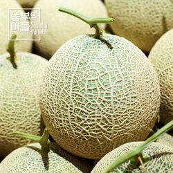 제철과일 머스크메론 7kg(3-4수)