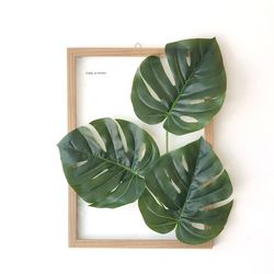 투명 식물 인테리어 액자-몬스테라 우드액자 A3