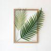 투명 식물 인테리어 액자-야자 우드액자 A3