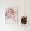 투명 식물 인테리어 액자 - 핑크 안개꽃다발 프리저브드 A3