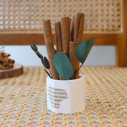 시나몬 석고화분 방향제