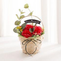 비누꽃 카네이션 꽃바구니