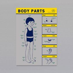 POSTER - BODY PARTS (GRAY)