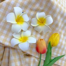 알로하 하와이꽃 머리핀 휴양지 바다