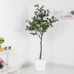 유카리나무set 180cmKO (5-6) 조화 나무 인조 FREOFT