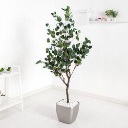 유카리나무set 165cmKO (3-4) 조화 나무 인조 FREOFT