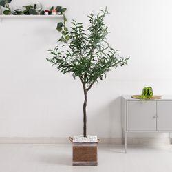 올리브나무set 165cmKO (2-2) 조화 나무 인조 FREOFT