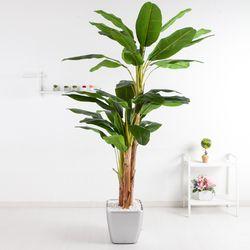 바나나트리set 250cmKO(5-7) 조화 나무 인조 FREOFT