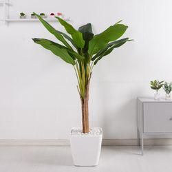 바나나트리set 165cmKO(5-6) 조화 나무 인조 FREOFT