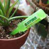 하이포넥스 식물영양제 그린 모든식물용 10개입