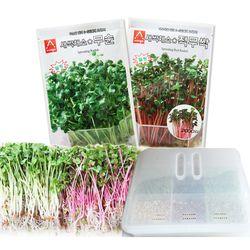 새싹재배세트 대 무순 적무 키우기 새싹재배기 수경재배기
