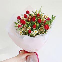 딸기 품은 천일홍