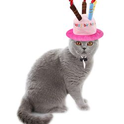 강아지 고양이 애견 해피버스데이 모자