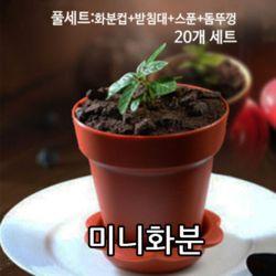 화분 미니 화분컵 컵케익용기 20개 세트인테리어소품