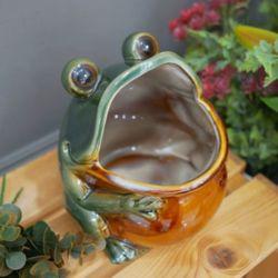 입큰 개구리 미니화분 다용도 소품 캔들보관함 다육이