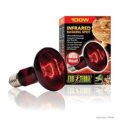 파충류 전구 적외선 램프 100W(PT2144)