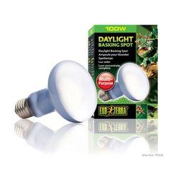 파충류 전구 바스킹 스팟 램프 100W(PT2133)