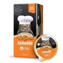 맛있는 고양이 간식 미우팟 연어(30g 6개)영양듬뿍껍질