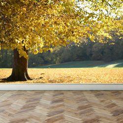 디자인벽지 프리미엄 패브릭 아트벽지 가을 숲