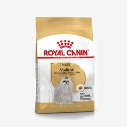강아지먹이 말티즈어덜트(1.5kg) 애견 영양사료 주식