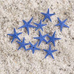 초미니 불가사리 10P세트(블루)