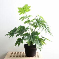 조화 네츄럴 스톤 나무 중형 화분 메이플