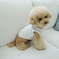 유아러피치 은박리본 홈웨어 강아지옷 애견의류