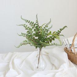 동글동글 그린잎 부쉬