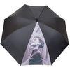 행복은 햅번처럼 자동장우산