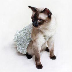 [CAT] 몽페레 프로방스 홀터넥원피스 Herb tea (케이프별도)