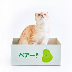 고양이 스크래쳐 후르츠냥박스 배