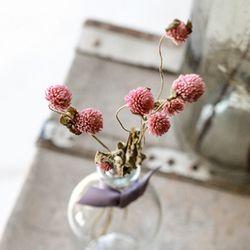 프리저브드플라워 - 천일홍  Globe amaranth