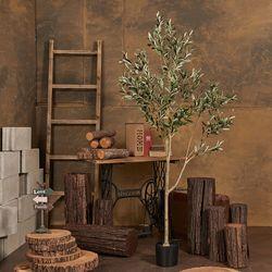올리브 인조 조화 나무 보드올리브(180cm) 플랜테리어