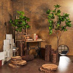 도그우드 인테리어 인조 조화 나무(210cm) 플랜테리어