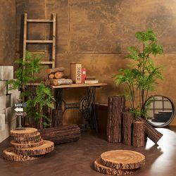 아스파라거스 고사리 인테리어 인조 조화 나무(150cm)