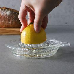 베이직 유리 레몬스퀴즈
